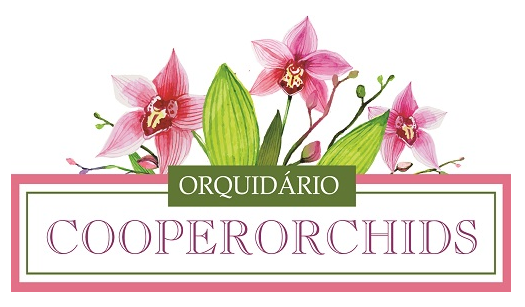 Cooperorchids